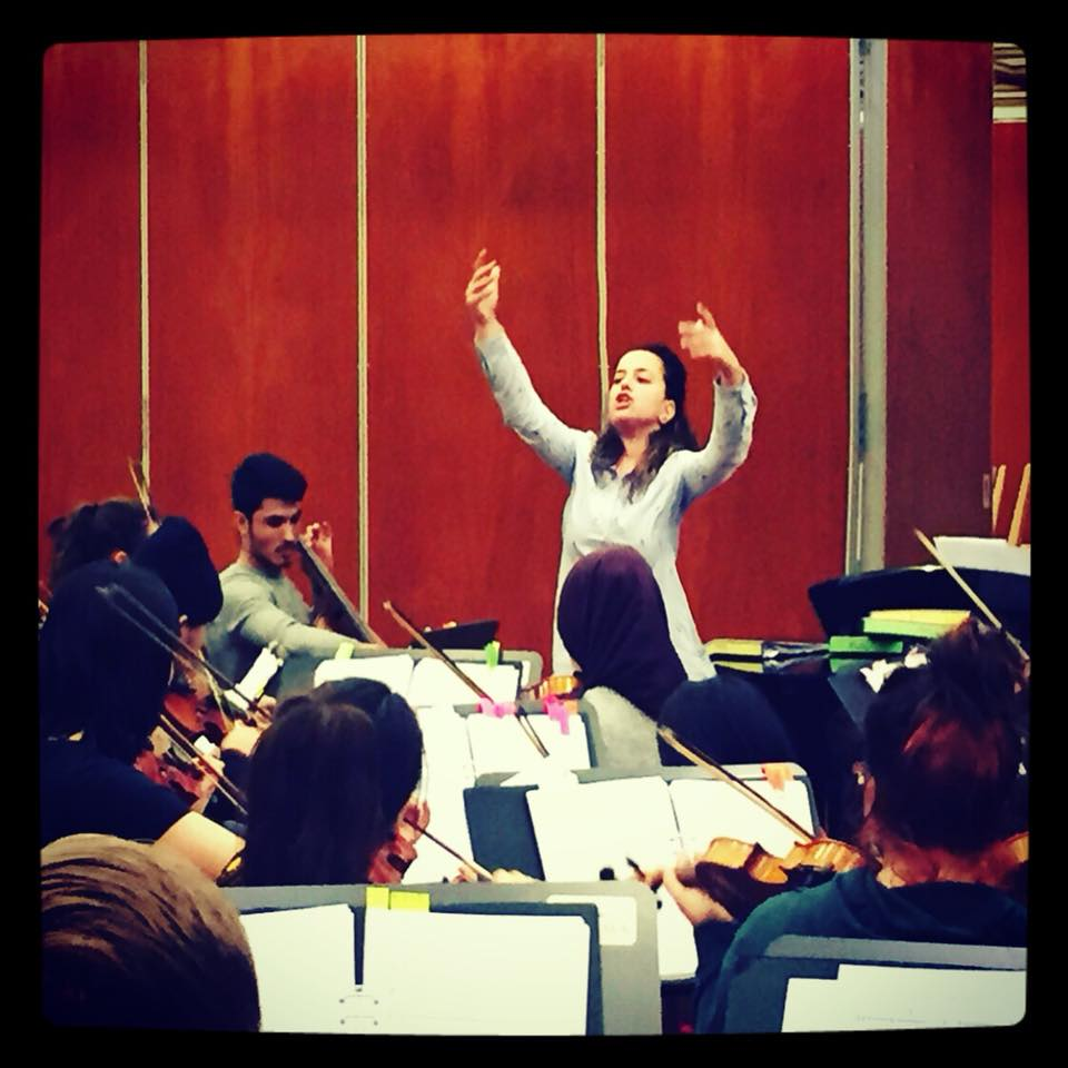 Conducting the Dream Orchestra